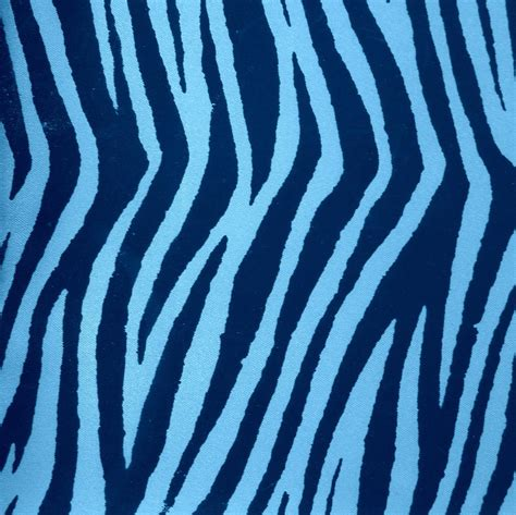 blue zebra print photograph
