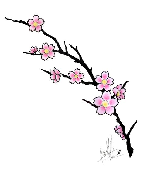 cartoon cherry blossom tree clipart best