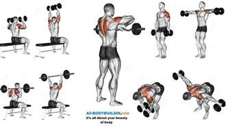 Bench Or Dumbbell Press Best Shoulder Workout 5 Exercises Explained