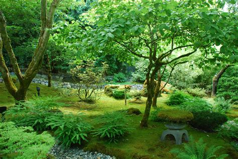 Garden Forest by Peaceful Japanese Garden Travel Wallpaper And Stock Photo