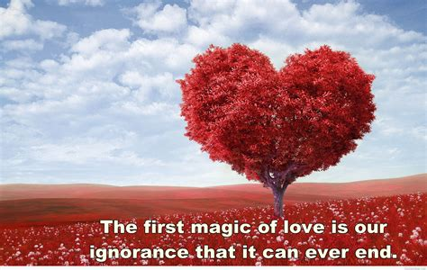 images of love nature love nature wallpaper quote hd