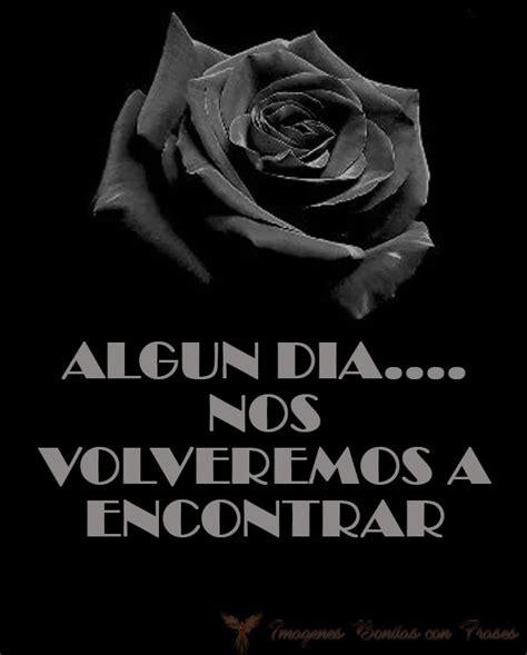 imagenes de tristeza rosas im 225 genes de rosas negras con palabras de tristeza y dolor