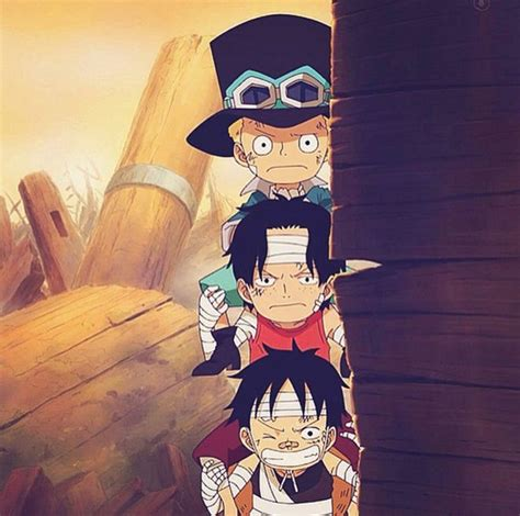 drive anime one piece 593 best images about one piece on pinterest anime one