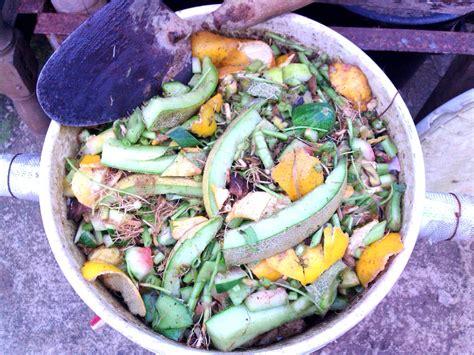 membuat mol dari yakult cara membuat mol dari limbah buah buahan ordinary blog s