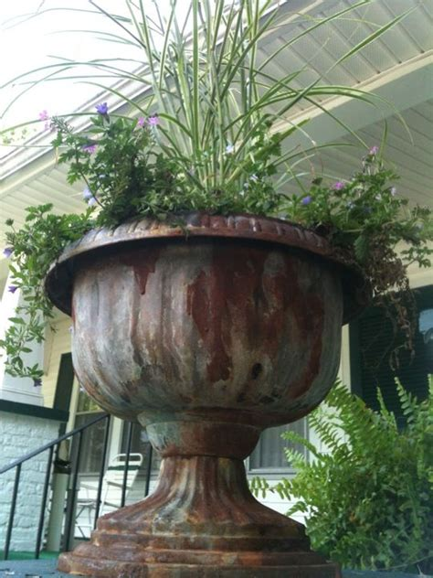 Planter Urns Cheap by Best 25 Urn Planters Ideas On Planters Shade