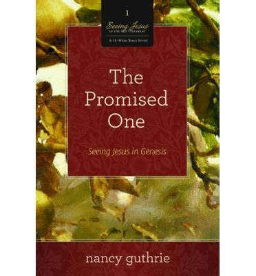 the promised one chalam faerytales books the promised one nancy guthrie 9781433533549