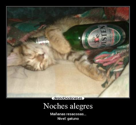 Imagenes De Viejitas Alegres | noches alegres desmotivaciones