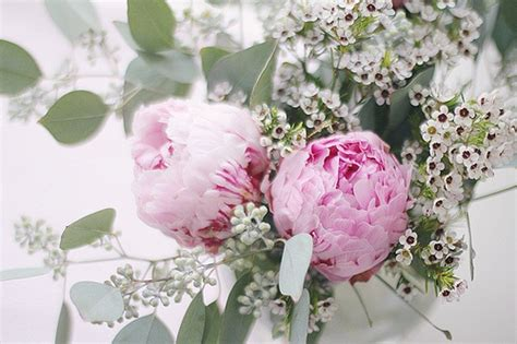 dark pink peony photograph by sandy keeton 17 best images about peonies and plumbago on pinterest
