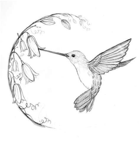 simple hummingbird sketch google search doodles