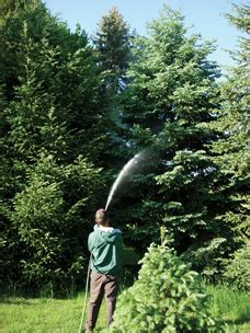 heritage lawn and landscape heritage lawn and landscape york pa tree services certified arborists