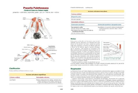 libro anatoma del yoga comprar libro anatom 237 a del yoga