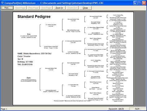 pedigree template family tree template family tree template