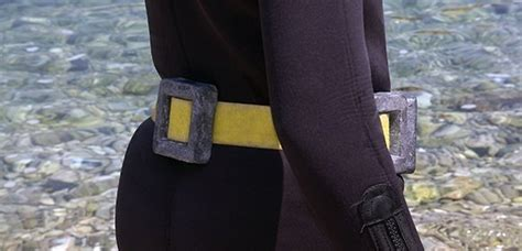 dive weights scuba diving weights weight belt or bcd integrated system