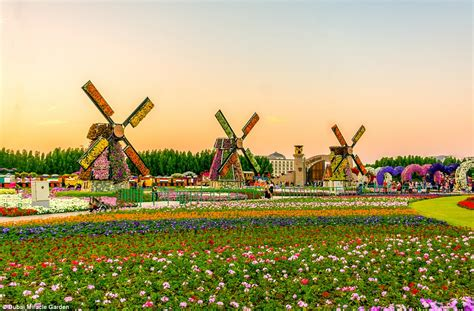 florist jobs in dubai 16 spectacular photos that will make you visit the miracle