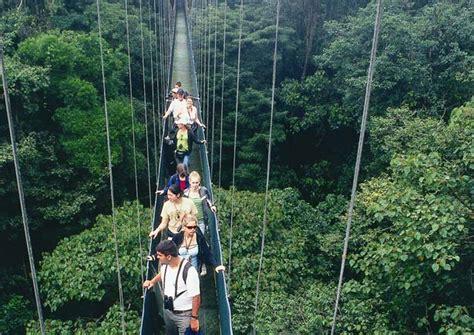 Original Canopy Tour   Half Day Tour in Costa Rica