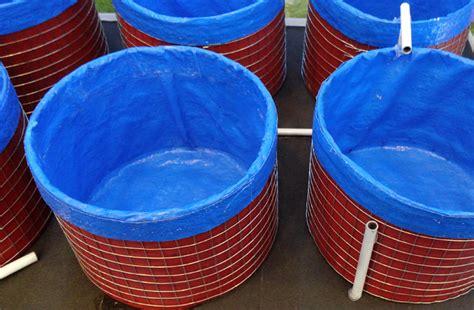 Pakan Ikan Lele Bioflok aplikasi teknologi bioflok pada lele bebeja