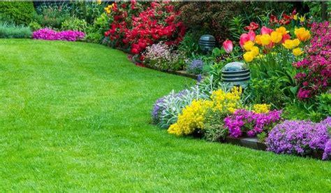 grossi fiori da giardino fiori da giardino