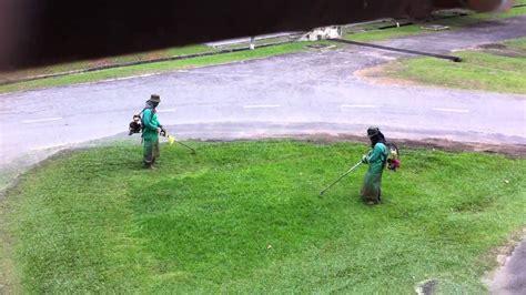 Mesin Rumput mesin rumput