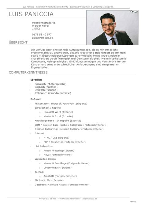 Sample Management Consulting Resume by Luis Paniccia Lebenslauf 2015