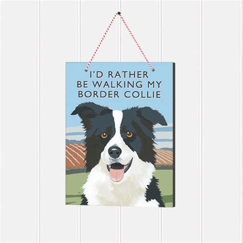 border collie x pug border collie sign pug puffin