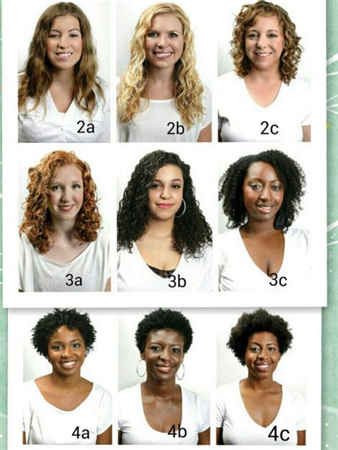 List Of Different Types Of Hair Buns by 18 Curly Hair Care Hacks