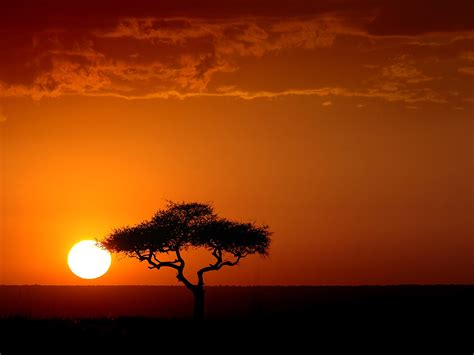 imagenes i love kenia in the shade of a tree in africa youth challenge