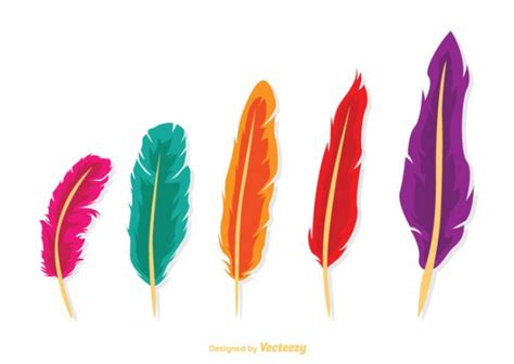colored feathers colored feathers vector free