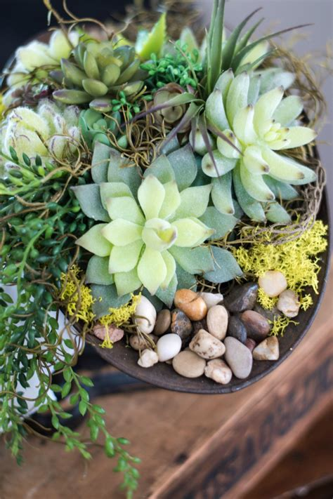 diy succulents diy vintage succulent centrepiece vin yet etc vin yet etc