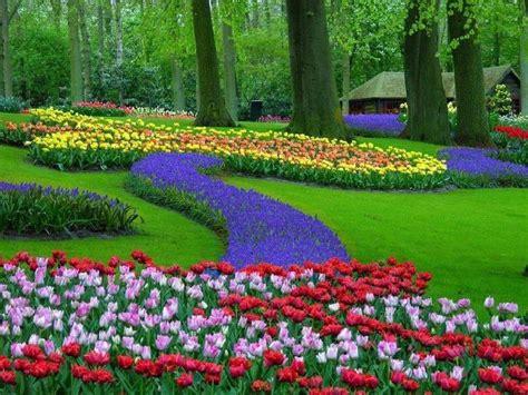 imagenes de jardines normales parque keukenhof holandaminuto ligado