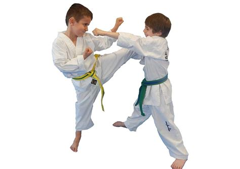 home hamilton ancaster and stoney creek martial arts