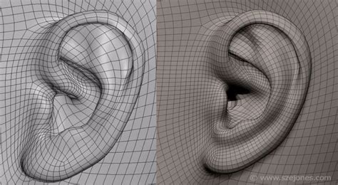 zbrush tutorial ear 276 best images about zbrush assets on pinterest brush