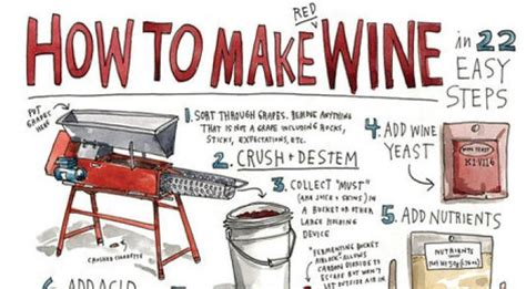How To Make A L From A Wine Bottle how to make wine in 22 easy steps infographic