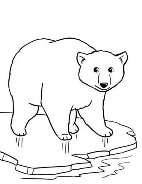 Ice Bear Coloring Page   polar bear on thin ice coloring page maľovanky zvierata