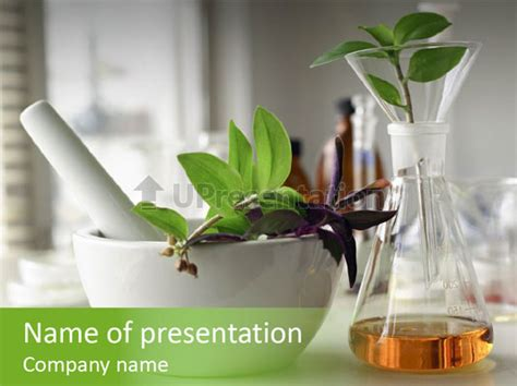 herb powerpoint themes powerpoint templates free herbs images powerpoint