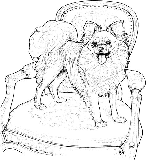 Perfect Dog Breed Coloring Pages 69 For Gallery Coloring Breed Coloring Pages