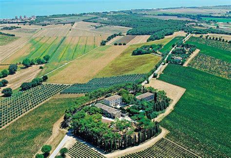 le terrazze numana fattoria le terrazze produzione e vendita numana