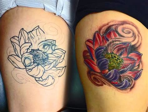 lotus cover up cover up models picture