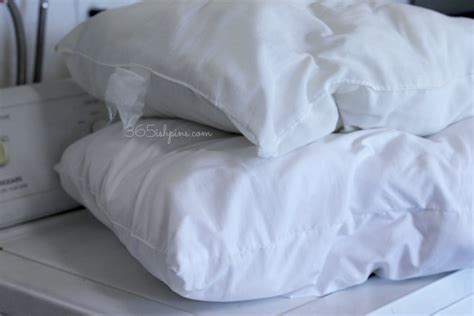 Wash Pillow by How To Wash And Whiten Pillows Vol 2 Day 100 365ish Days Of