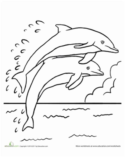 leaping dolphins coloring page dolphin coloring pages