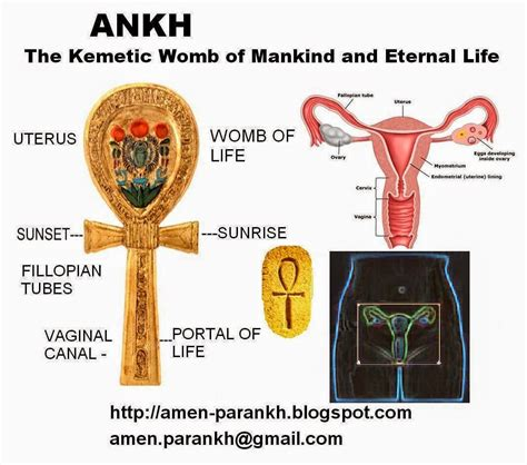 historic meaning meaning of the ankh african consciousness