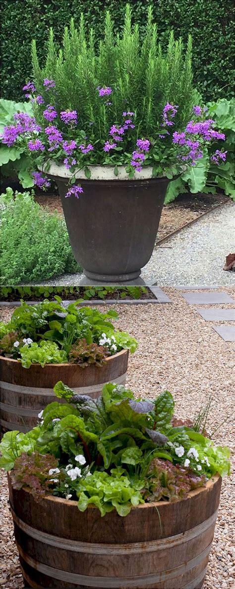 herb container garden ideas best 25 indoor herb planters ideas on diy