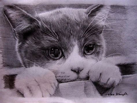 Cat Pencil cat drawing pencil by gattanday on deviantart