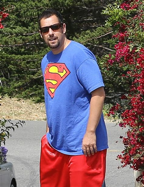s day adam sandler adam sandler s blended disappoints at the box office on