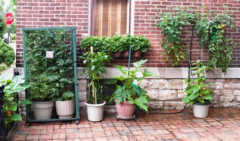 Diy Container Garden by 4 Diy Container Garden Ideas For Mesa Awning