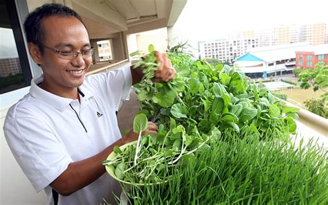 smu launches grow initiative  places  singapore