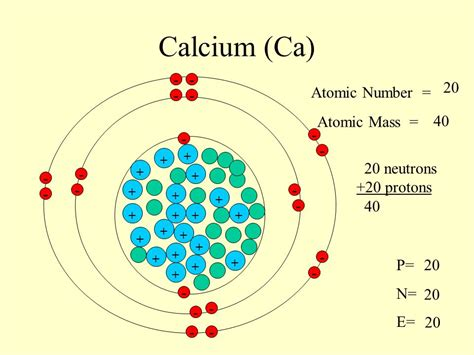 Number Of Protons In Calcium by Sodium Na 11 Atomic Number Atomic Mass