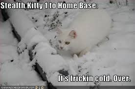 cold weather funny on pinterest cold weather funny quotes weather pinterest