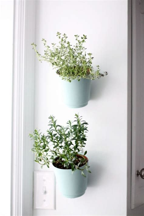 Planter Indoor by 18 Alluring Indoor Wall Hanging Planter Designs