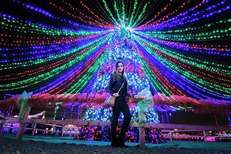 haggin oaks christmas lights bakersfield lights decoratingspecial