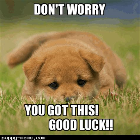 Funny Good Luck Memes - funny good luck memes funny good luck on your exam meme